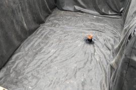 Hidroizolație pentru beci in Tunari